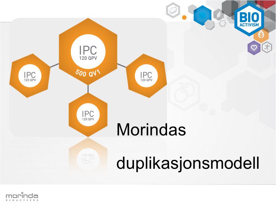Morindas duplikasjonsmodell