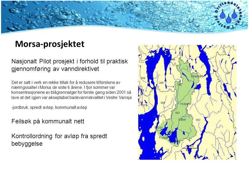 Morsa-prosjektet Nasjonalt Pilot prosjekt i forhold til praktisk gjennomføring av vanndirektivet Det er satt i verk en rekke tiltak for å redusere tilførslene av næringssalter i Morsa de siste ti årene.
