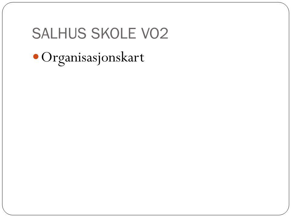 SALHUS SKOLE VO2 Organisasjonskart