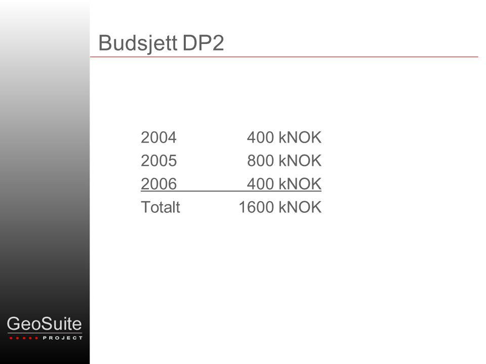 Budsjett DP2 2004 400 kNOK 2005 800 kNOK 2006 400 kNOK Totalt1600 kNOK