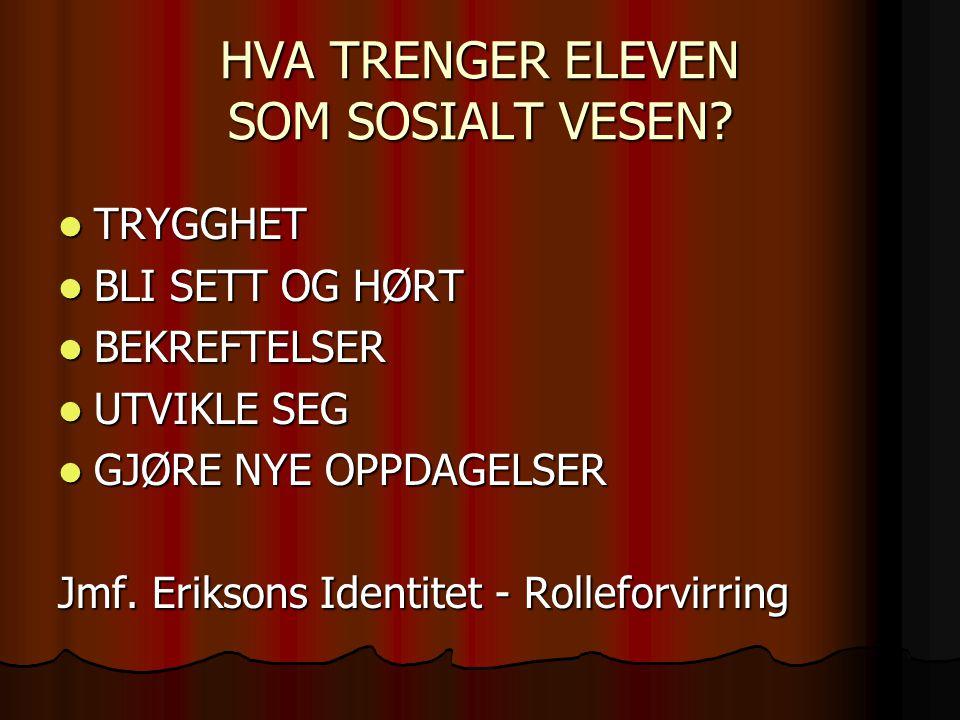 HVA TRENGER ELEVEN SOM SOSIALT VESEN.