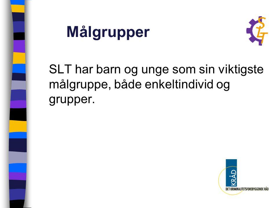 Organisering på tre nivå: Politiråd for Gran- og Lunner kommune (styringsgruppe som etablerer overordnede rammer) Fordi forankring på topplan har vist seg nødvendig.