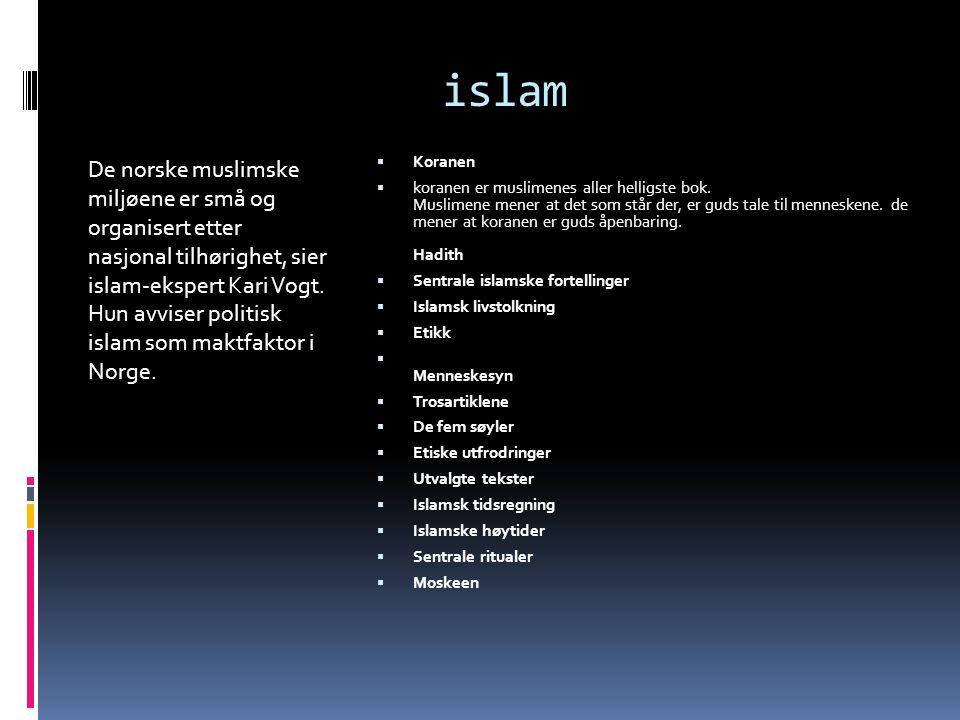 islam De norske muslimske miljøene er små og organisert etter nasjonal tilhørighet, sier islam-ekspert Kari Vogt.
