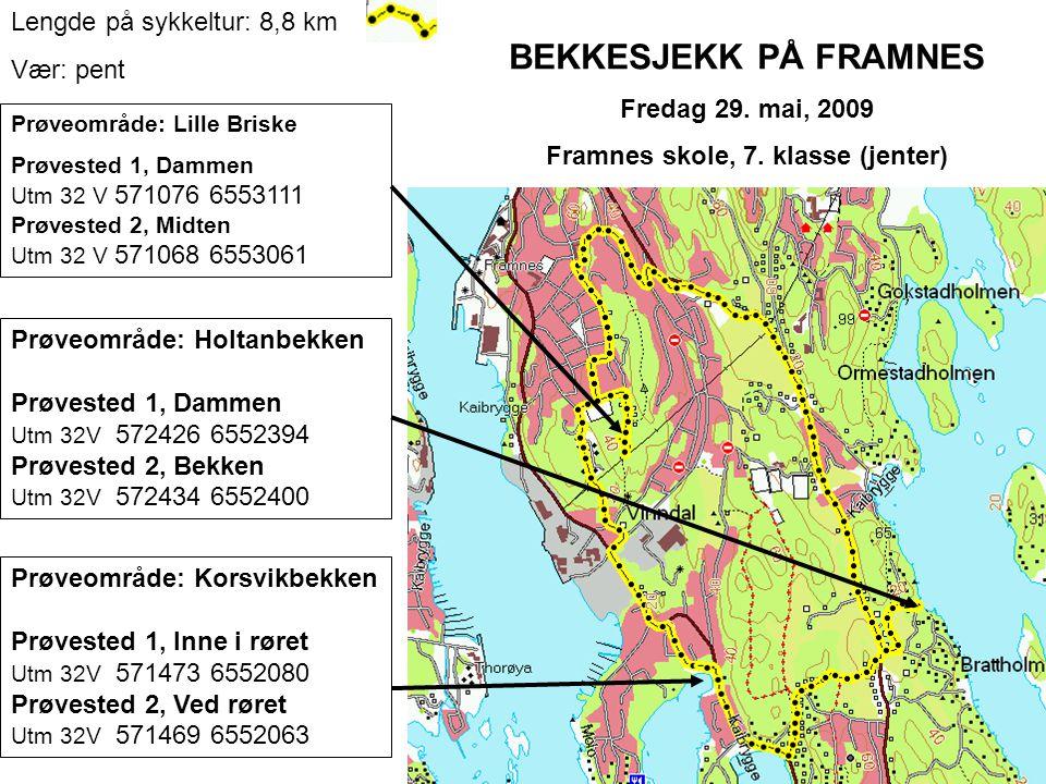 BEKKESJEKK PÅ FRAMNES Fredag 29. mai, 2009 Framnes skole, 7.