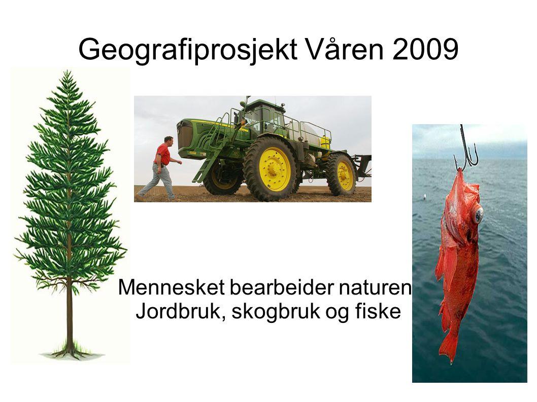 Geografiprosjekt Våren 2009 Mennesket bearbeider naturen; Jordbruk, skogbruk og fiske