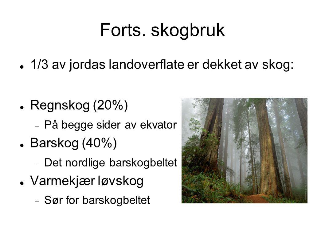 Forts. skogbruk 1/3 av jordas landoverflate er dekket av skog: Regnskog (20%)  På begge sider av ekvator Barskog (40%)  Det nordlige barskogbeltet