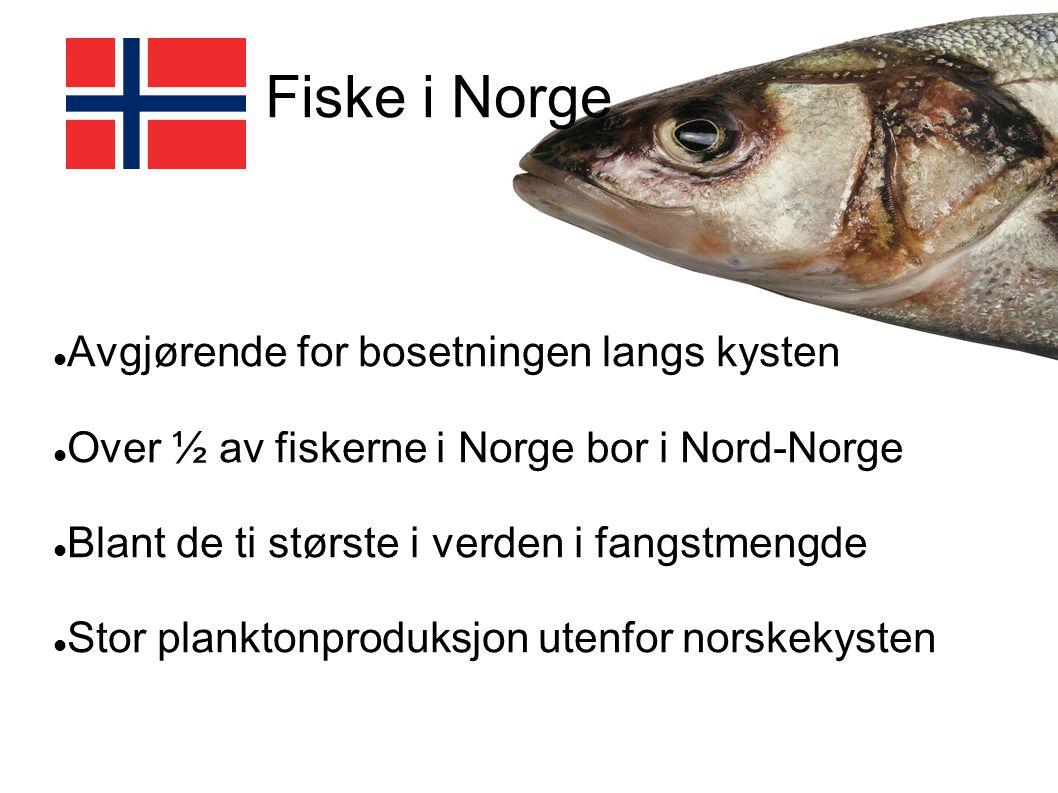 Fiske i Norge Avgjørende for bosetningen langs kysten Over ½ av fiskerne i Norge bor i Nord-Norge Blant de ti største i verden i fangstmengde Stor pla