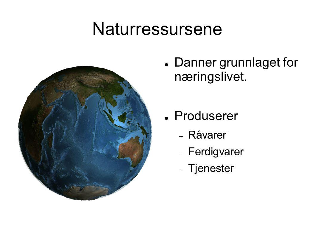 Naturressursene Danner grunnlaget for næringslivet. Produserer  Råvarer  Ferdigvarer  Tjenester
