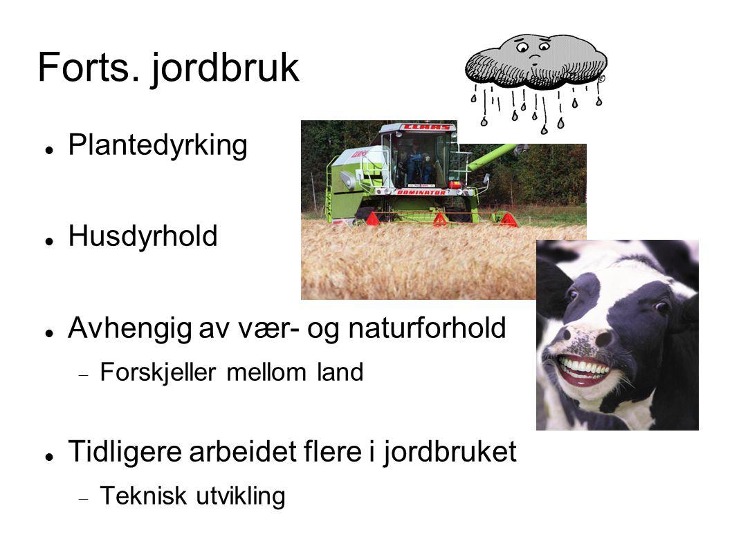 Jordbruk i Norge Foregår på flatbygdene:  Østlandet  Trøndelag  Rogaland Mekanisering og spesialisering etter 2VK 1950: 20% sysselsatt i jordbruket, i 2003: 2,5%