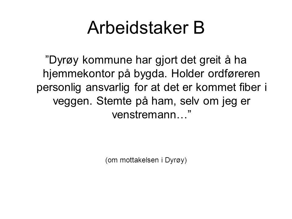 Arbeidstaker B Dyrøy kommune har gjort det greit å ha hjemmekontor på bygda.