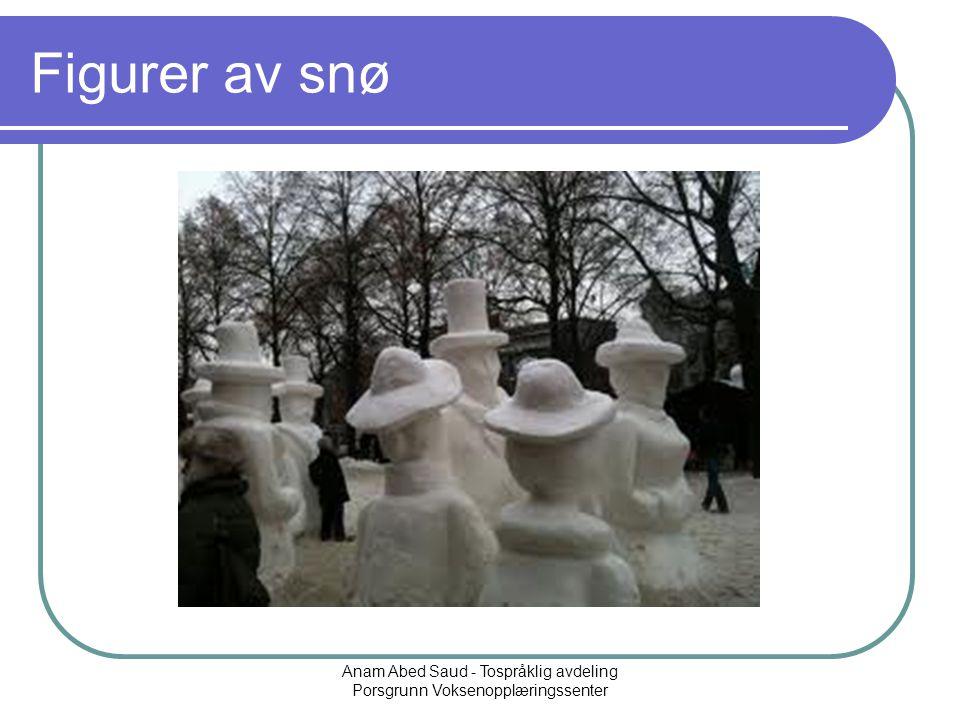 Anam Abed Saud - Tospråklig avdeling Porsgrunn Voksenopplæringssenter Figurer av snø