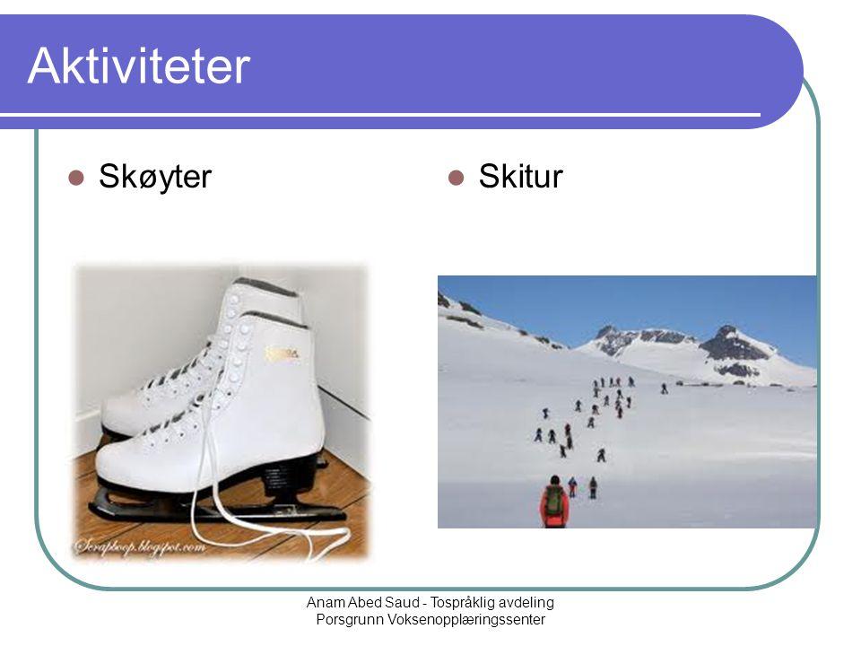 Anam Abed Saud - Tospråklig avdeling Porsgrunn Voksenopplæringssenter Aktiviteter Skøyter Skitur