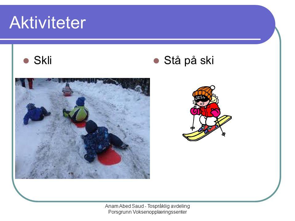Anam Abed Saud - Tospråklig avdeling Porsgrunn Voksenopplæringssenter Aktiviteter Skli Stå på ski