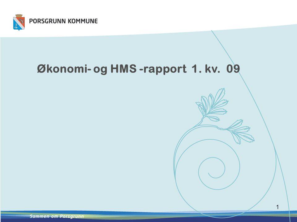 1 Økonomi- og HMS -rapport 1. kv. 09