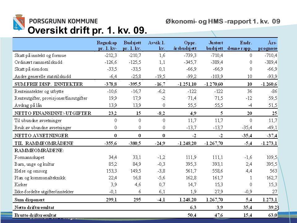 3 Økonomi- og HMS -rapport 1. kv. 09 Oversikt drift pr. 1. kv. 09.