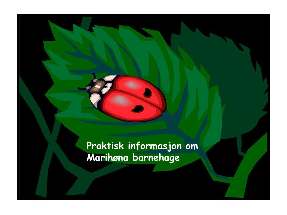 Praktisk informasjon om Marihøna barnehage