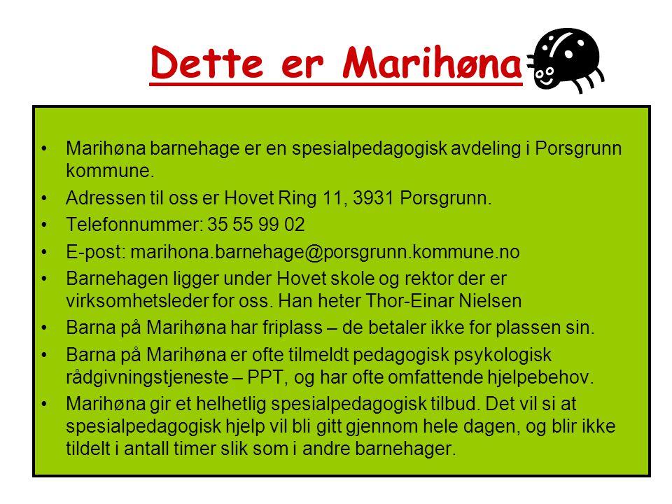 Marihøna barnehage er en spesialpedagogisk avdeling i Porsgrunn kommune. Adressen til oss er Hovet Ring 11, 3931 Porsgrunn. Telefonnummer: 35 55 99 02