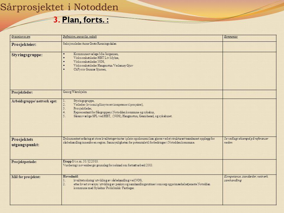 Sårprosjektet i Notodden 3. Plan, forts. : Organiseres gmDefinisjon, ansvarlig, vedtakKommentar Prosjekteier: Seksjonsleder Anne Grete Rønningsdalen S