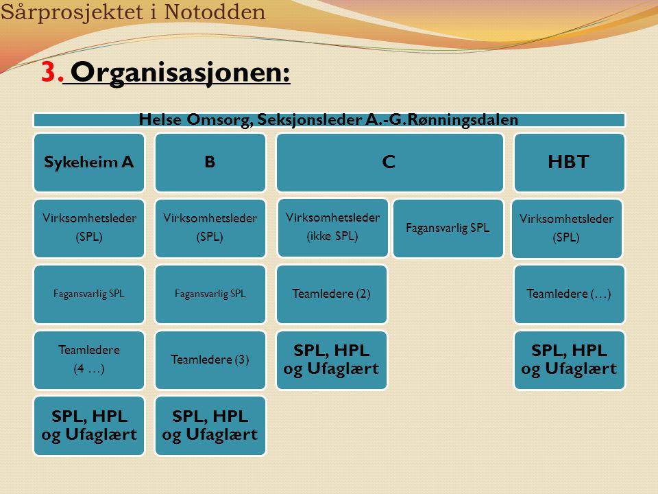 Sårprosjektet i Notodden Helse Omsorg, Seksjonsleder A.-G.Rønningsdalen Sykeheim A Virksomhetsleder (SPL) Fagansvarlig SPL Teamledere (4 …) SPL, HPL o