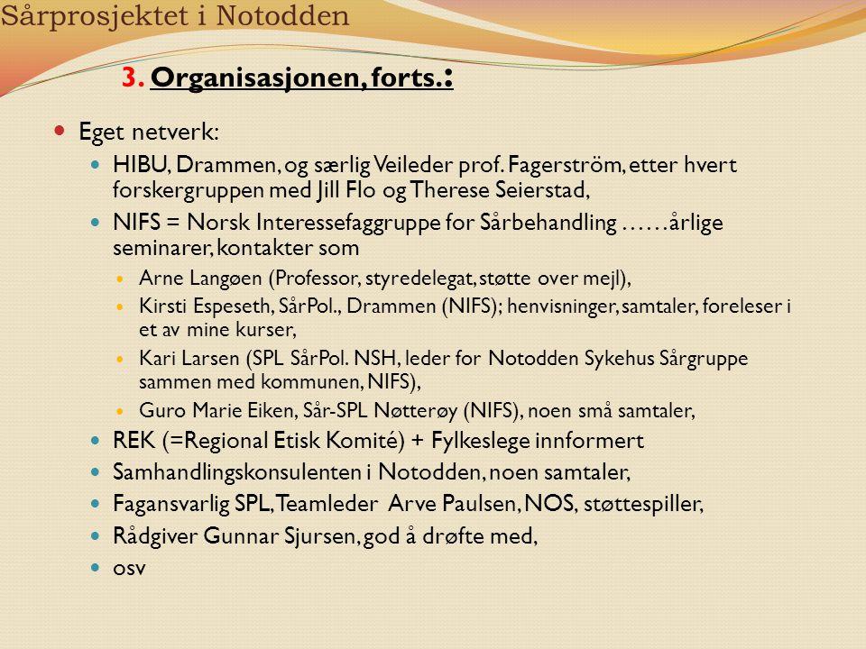 Sårprosjektet i Notodden Eget netverk: HIBU, Drammen, og særlig Veileder prof. Fagerström, etter hvert forskergruppen med Jill Flo og Therese Seiersta
