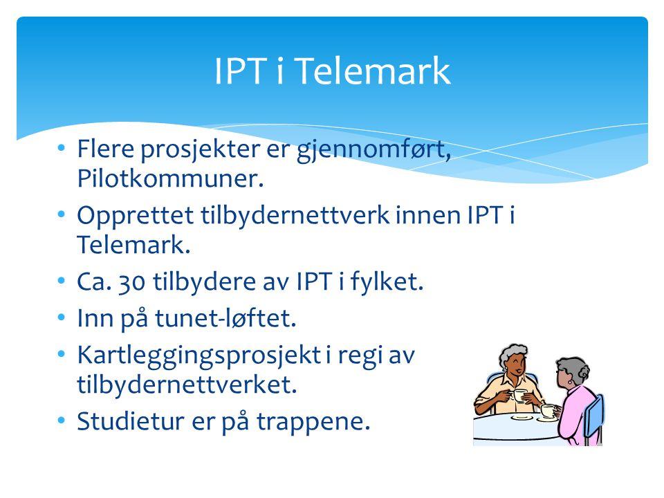 Flere prosjekter er gjennomført, Pilotkommuner. Opprettet tilbydernettverk innen IPT i Telemark. Ca. 30 tilbydere av IPT i fylket. Inn på tunet-løftet