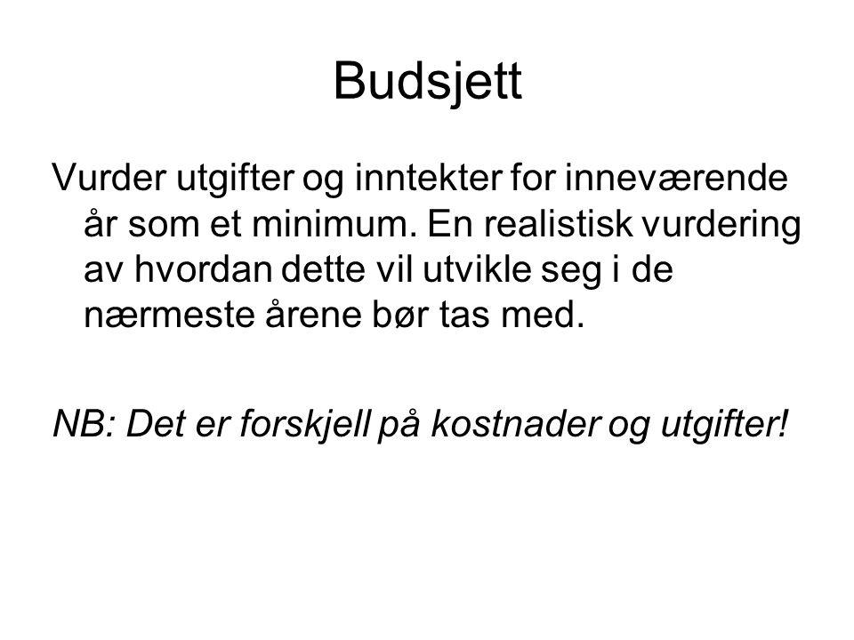 Budsjett Vurder utgifter og inntekter for inneværende år som et minimum.