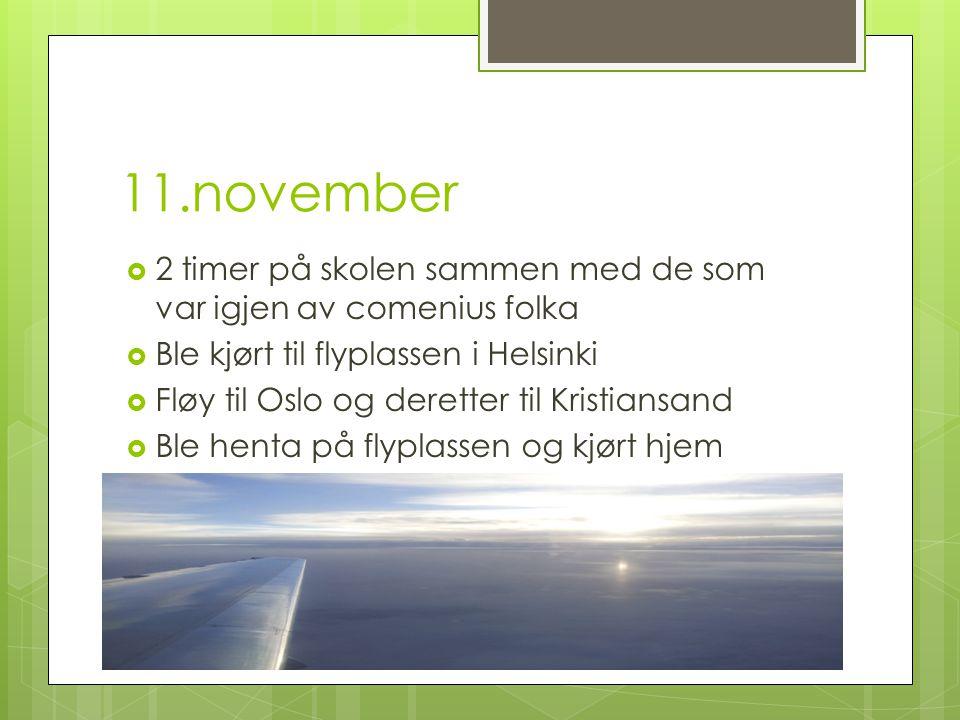 11.november  2 timer på skolen sammen med de som var igjen av comenius folka  Ble kjørt til flyplassen i Helsinki  Fløy til Oslo og deretter til Kristiansand  Ble henta på flyplassen og kjørt hjem