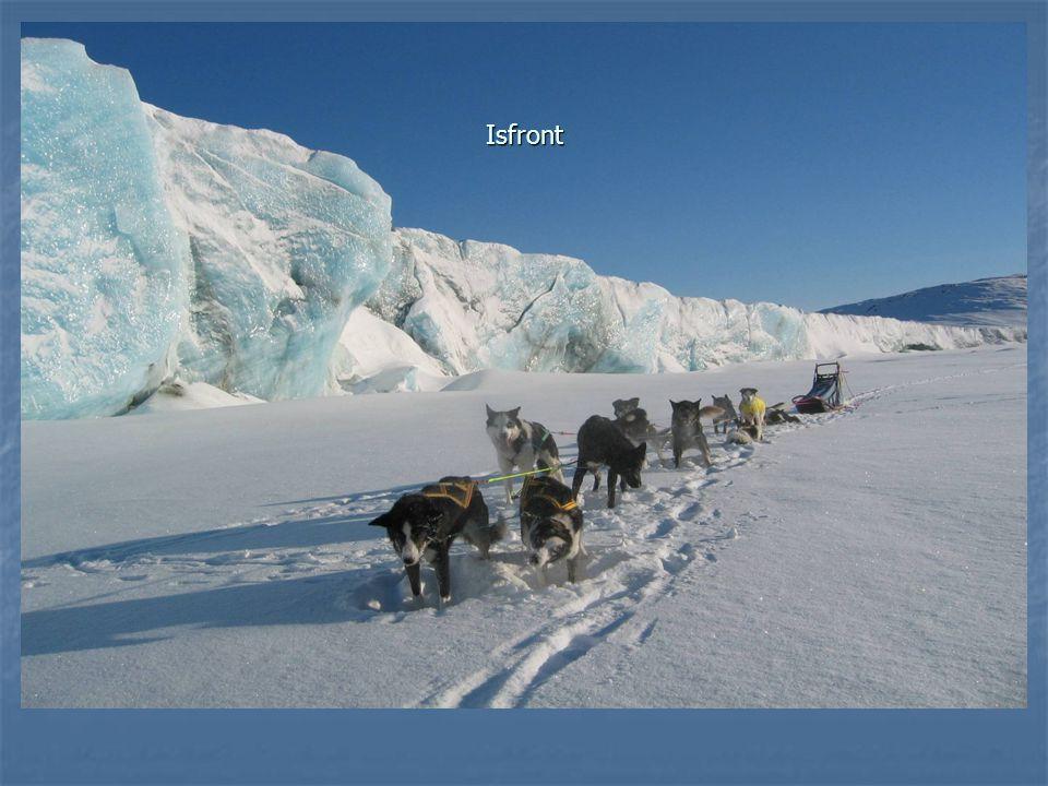 Denne isfronten ligger rett etter riksgrensen, rett sør for grensestøtte 239a.