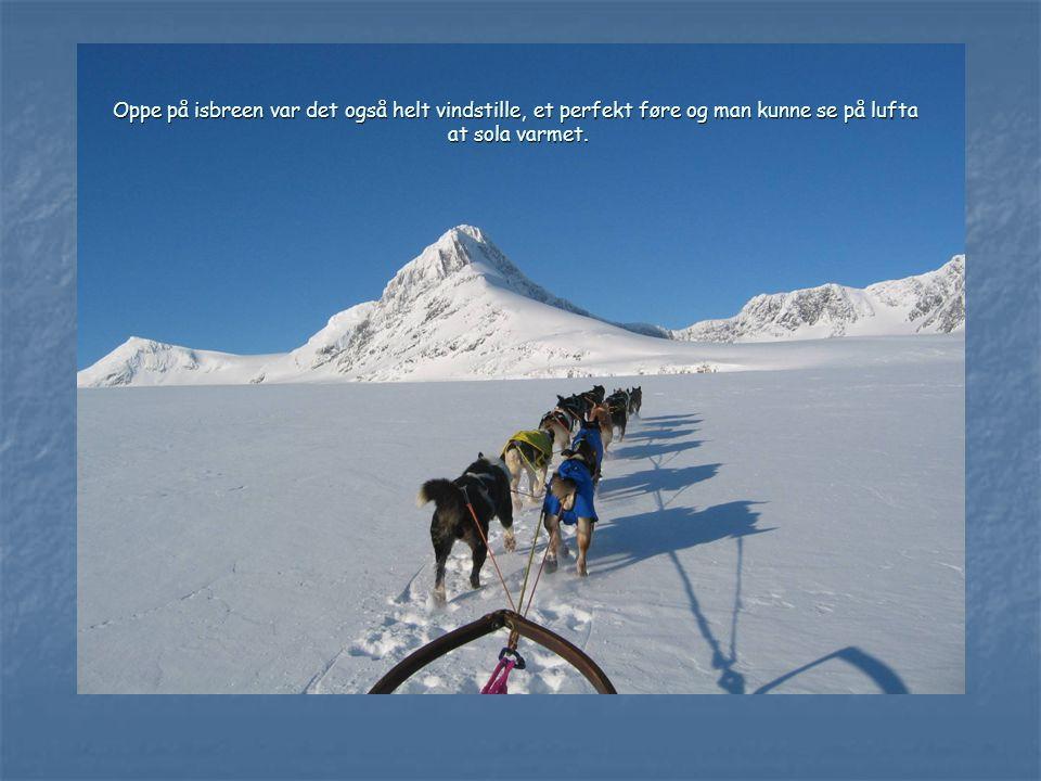 Fra isgrotta kan man ta seg rett opp på isbreen. Her ser man Suliskongen stikke opp av isen.