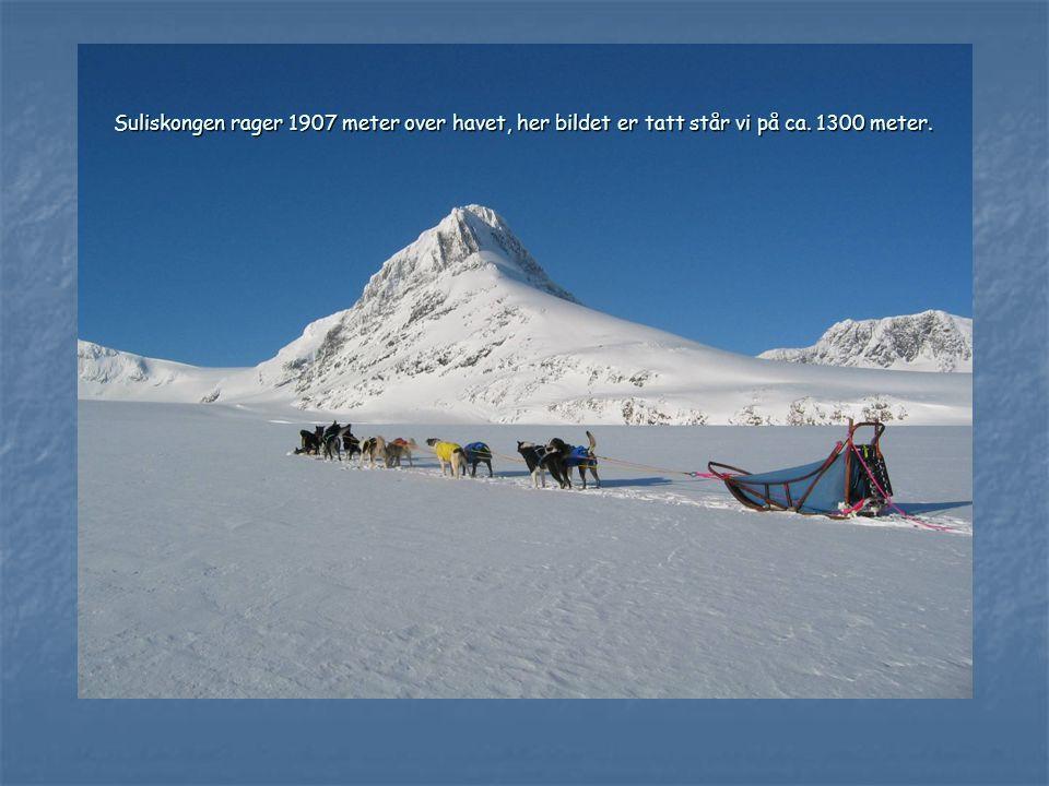 Suliskongen rager 1907 meter over havet, her bildet er tatt står vi på ca. 1300 meter.