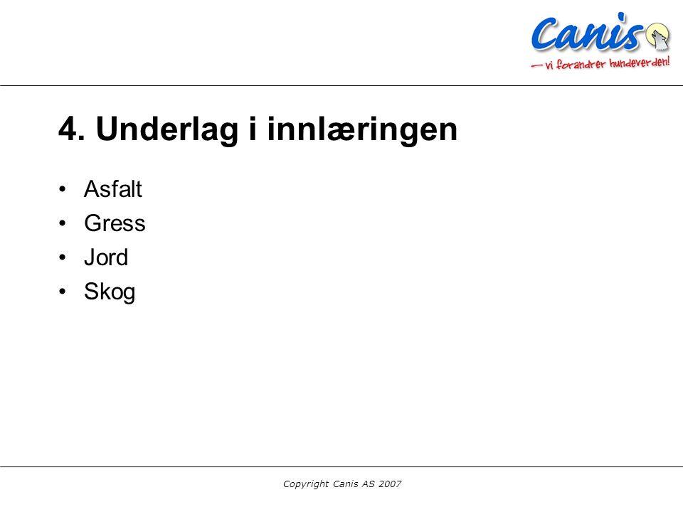Copyright Canis AS 2007 4. Underlag i innlæringen Asfalt Gress Jord Skog