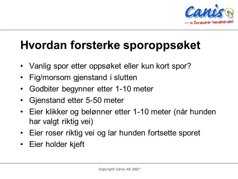 Copyright Canis AS 2007 Hvordan forsterke sporoppsøket Vanlig spor etter oppsøket eller kun kort spor? Fig/morsom gjenstand i slutten Godbiter begynne