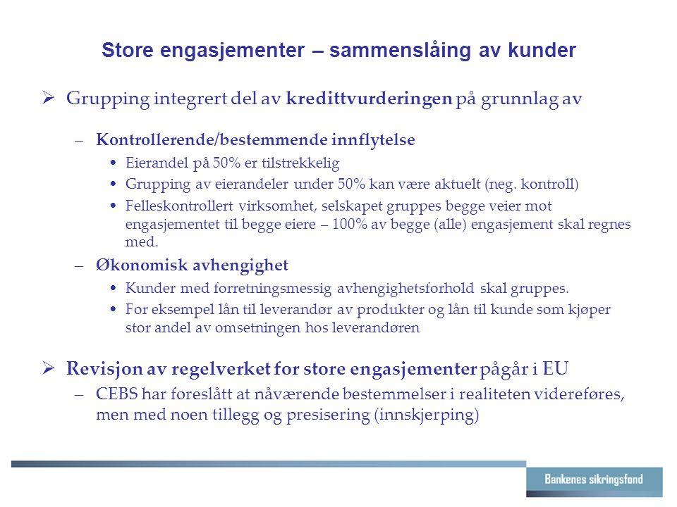 Store engasjementer – sammenslåing av kunder  Grupping integrert del av kredittvurderingen på grunnlag av –Kontrollerende/bestemmende innflytelse Eierandel på 50% er tilstrekkelig Grupping av eierandeler under 50% kan være aktuelt (neg.
