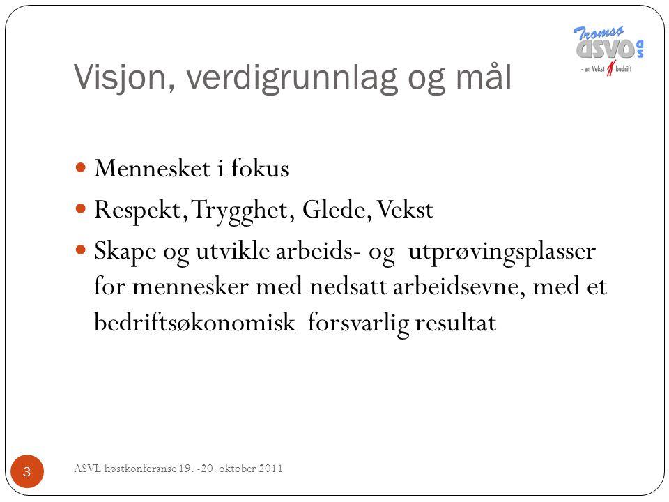 4 Tromsø ASVO 60 VTA 15APS, i Kreativt verksted, Grønt arbeid på gård og på ASVO 12 deltagere, Musketerene prosjekt 10 +/-APO tidsbegrenset arbeidspraksis fra NAV og elver fra ulike v.g.