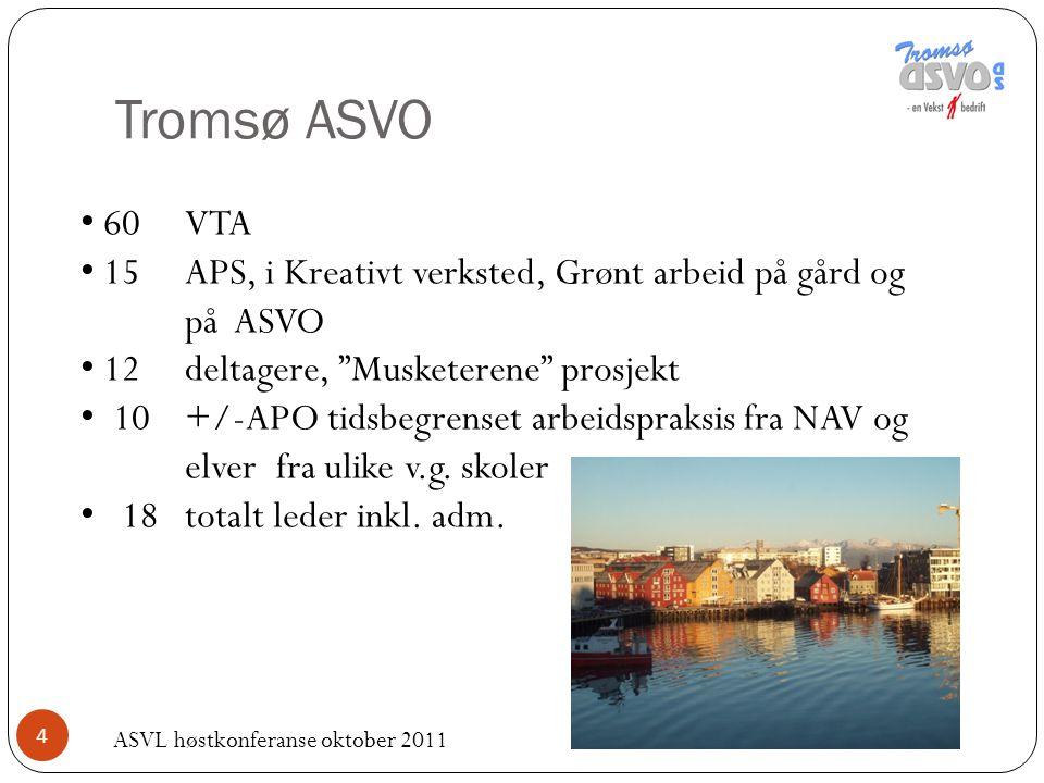 """4 Tromsø ASVO 60 VTA 15APS, i Kreativt verksted, Grønt arbeid på gård og på ASVO 12 deltagere, """"Musketerene"""" prosjekt 10 +/-APO tidsbegrenset arbeidsp"""