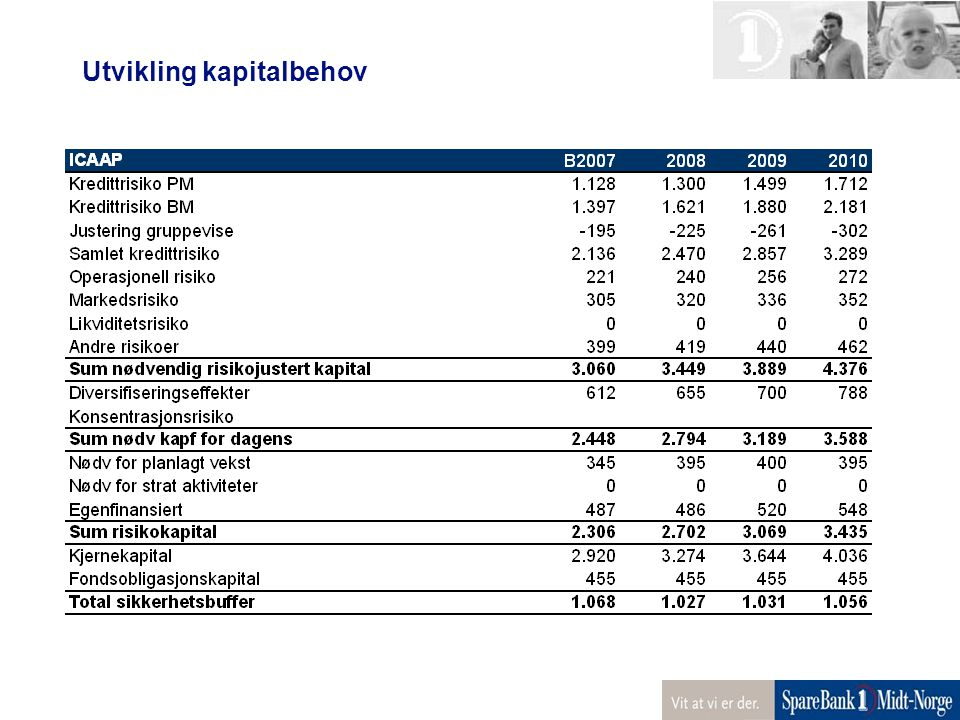 Utvikling kapitalbehov