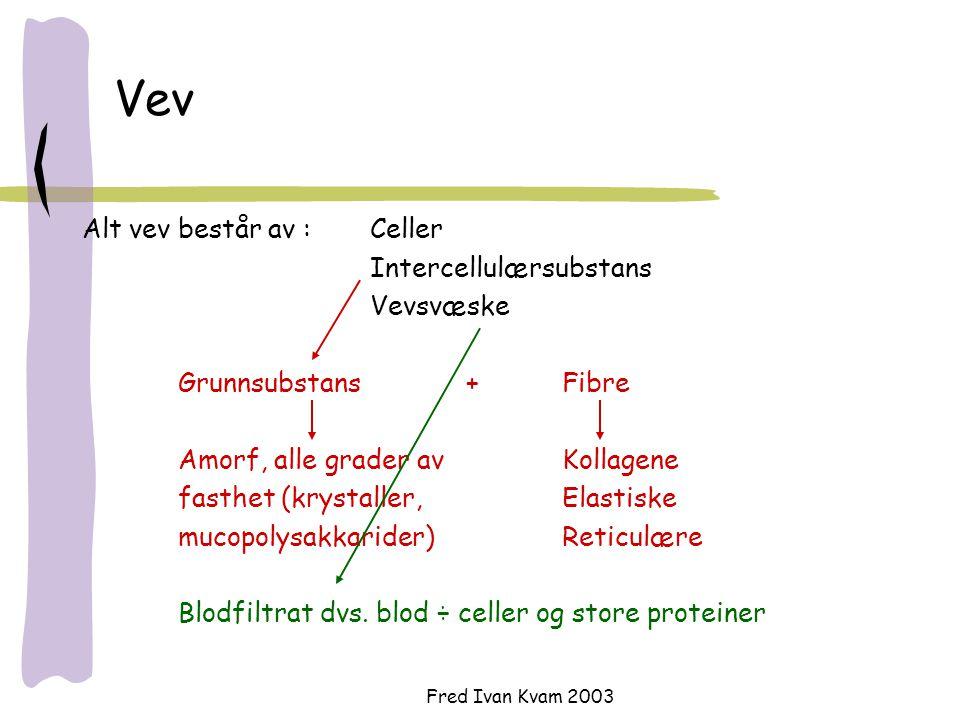 Fred Ivan Kvam 2003 Vev Alt vev består av :Celler Intercellulærsubstans Vevsvæske Grunnsubstans+Fibre Amorf, alle grader av Kollagene fasthet (krystal