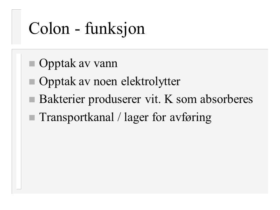 Colon - funksjon n Opptak av vann n Opptak av noen elektrolytter n Bakterier produserer vit. K som absorberes n Transportkanal / lager for avføring