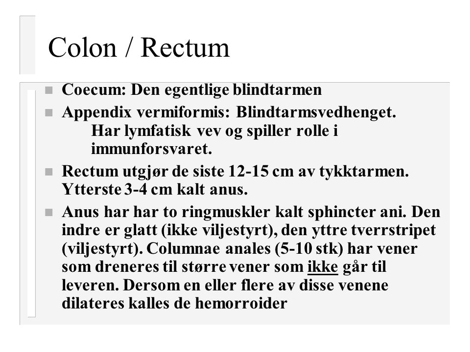 Colon / Rectum n Coecum: Den egentlige blindtarmen n Appendix vermiformis: Blindtarmsvedhenget. Har lymfatisk vev og spiller rolle i immunforsvaret. n