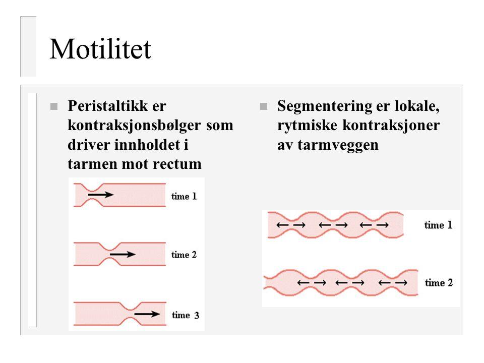 Motilitet n Peristaltikk er kontraksjonsbølger som driver innholdet i tarmen mot rectum n Segmentering er lokale, rytmiske kontraksjoner av tarmveggen