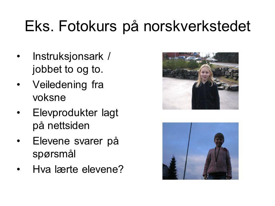 Eks. Fotokurs på norskverkstedet Instruksjonsark / jobbet to og to. Veiledening fra voksne Elevprodukter lagt på nettsiden Elevene svarer på spørsmål