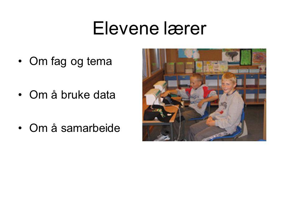 Elevene lærer Om fag og tema Om å bruke data Om å samarbeide