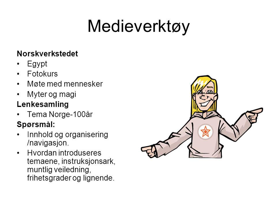 Eks.Fotokurs på norskverkstedet Instruksjonsark / jobbet to og to.