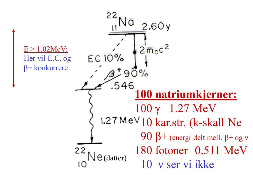 E > 1.02MeV: Her vil E.C. og β+ konkurrere 100 natriumkjerner: 100 γ 1.27 MeV 10 kar.str. (k-skall Ne 90 β+ (energi delt mell. β+ og ν 180 fotoner 0.5