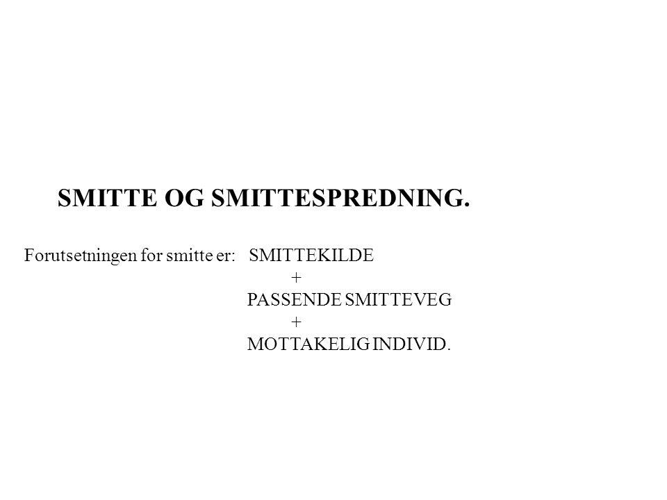 SMITTE OG SMITTESPREDNING. Forutsetningen for smitte er: SMITTEKILDE + PASSENDE SMITTEVEG + MOTTAKELIG INDIVID.