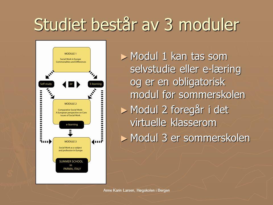 Anne Karin Larsen, Høgskolen i Bergen Studiet består av 3 moduler ► Modul 1 kan tas som selvstudie eller e-læring og er en obligatorisk modul før sommerskolen ► Modul 2 foregår i det virtuelle klasserom ► Modul 3 er sommerskolen