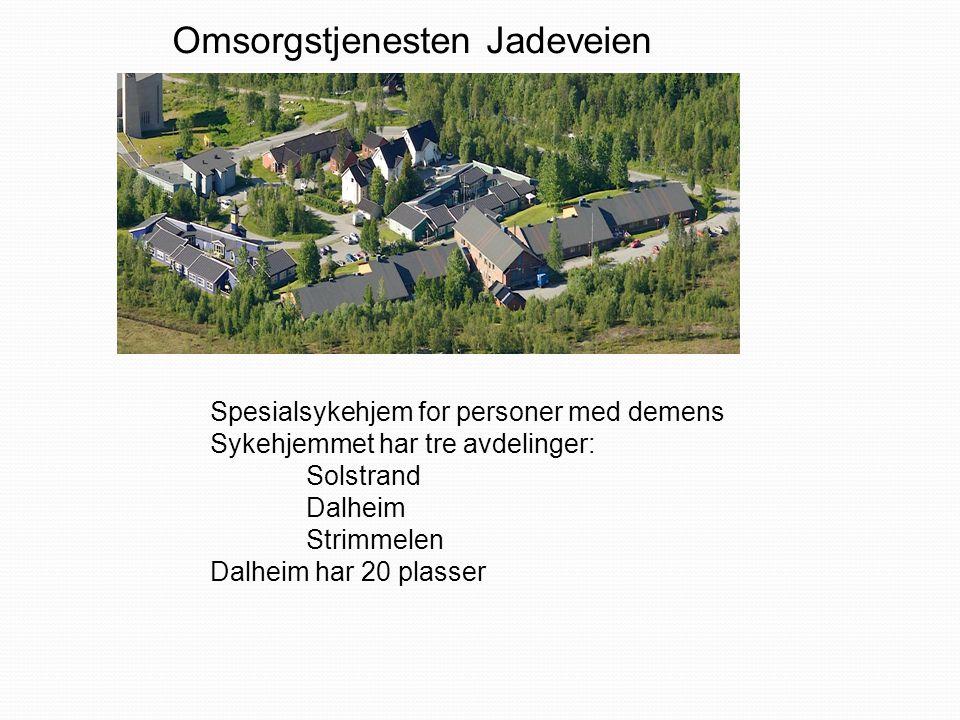 Omsorgstjenesten Jadeveien Spesialsykehjem for personer med demens Sykehjemmet har tre avdelinger: Solstrand Dalheim Strimmelen Dalheim har 20 plasser