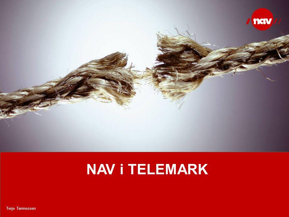 NAV, 17.08.2014Side 14 NAV i TELEMARK Terje Tønnessen