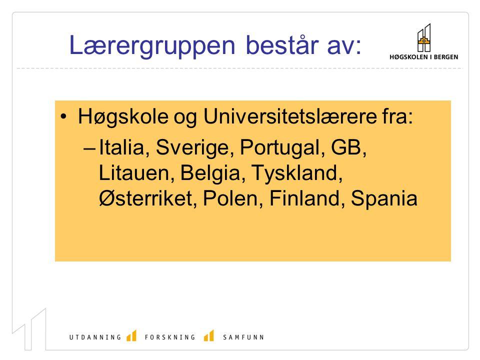 Lærergruppen består av: Høgskole og Universitetslærere fra: –Italia, Sverige, Portugal, GB, Litauen, Belgia, Tyskland, Østerriket, Polen, Finland, Spa