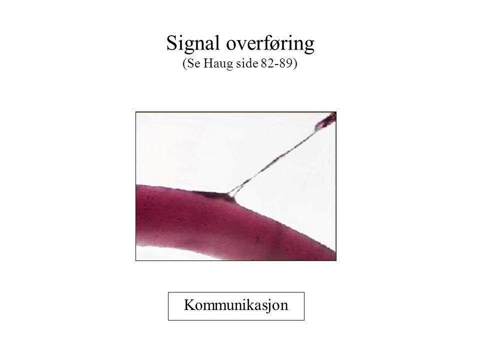 Signal overføring (Se Haug side 82-89) Kommunikasjon
